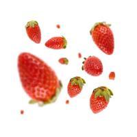 Strawberry 10ml 0,0 mg/ml